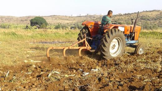 Man op tractor in Syrië